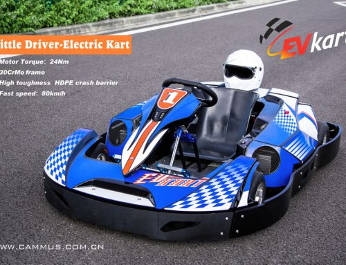 Electronic EV kart